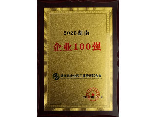 2020湖南企业100强